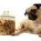 Top 3 High Value Treats for Your Pug